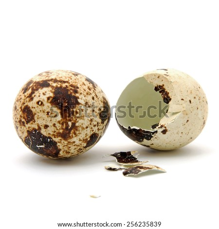 Two Peewit eggs over white background. One is whole and one is broken - stock photo