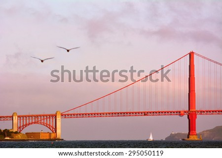 Two pelicans fly over the Golden Gate Bridge in San Francisco, CA.It is one of the most iconic bridges in the world. - stock photo