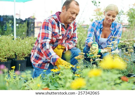 Two people taking care after flowers - stock photo