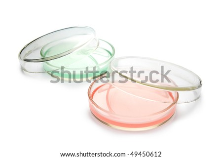 two Petri cups with open lids with red and green solution isolated on white - stock photo
