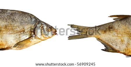 Two pieces of dry fish isolated on the white background