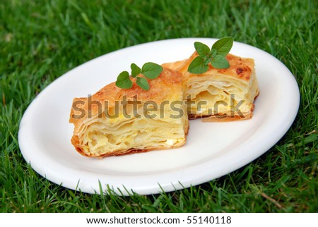 two pieces portion of appetizing homemade baked cheese pastry on white  plate over green grass - stock photo