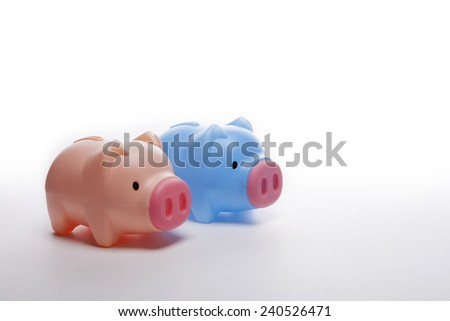 Two pig plastic blue and pink coin bank(money box) isolated white at the studio. - stock photo