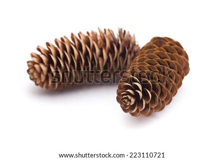 two pine cones - stock photo
