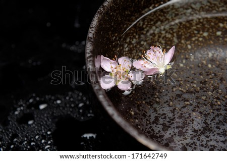 Two pink cherry in bowl on wet background - stock photo