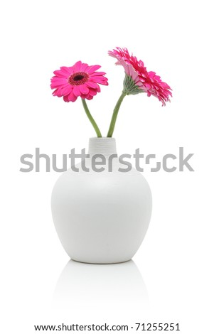 Two pink gerbera flowers in white vase, isolated on white - stock photo