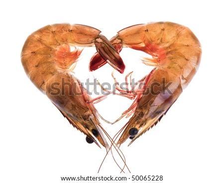 Two prawns in a heart shape - stock photo