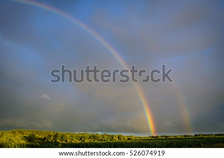 two rainbows over the forest