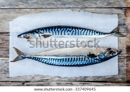 Two raw fresh mackerel fishes on a paper on wooden table - stock photo
