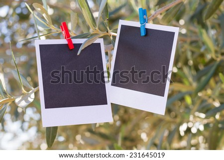 Two real blank instant photo hanging on clothesline.  - stock photo