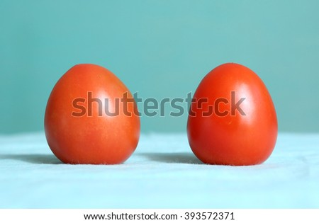 two red bull heart tomato on the blue background - stock photo