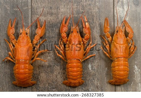 Two red crayfishes wrestling on old dark wooden table - stock photo