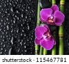 Two red orchid with bamboo grove on wet background - stock photo