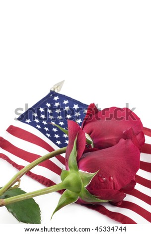 Two red roses with water drops on an American flag, vertical with white background, selective focus on roses, copy space - stock photo