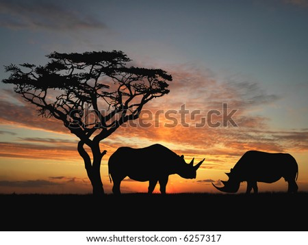 Two rhinoceros over orange sky - stock photo