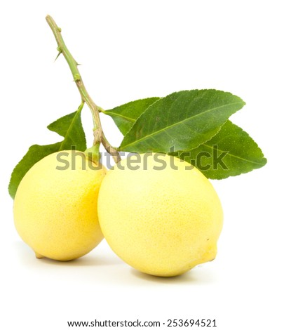 two ripe lemon in closeup isolated on white background