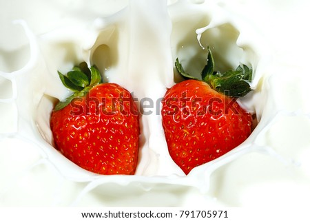 Two ripe red strawberries are dropped into milk and make a nice splash.