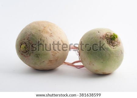 two ripe turnip on a white background - stock photo