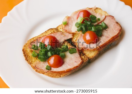 Two roasted bread sandwiches with dried meat, fresh tomatoes and onions on a white plate