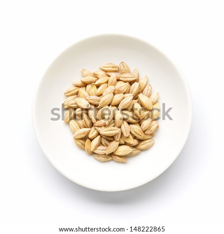 Two-row barley  with husks - stock photo