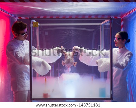 Two scientists standing on either side of an isolation or sterility tent holding onto the carcass of a bird over a white vapour while testing for bird flu virus or other pathogens in a laboratory - stock photo