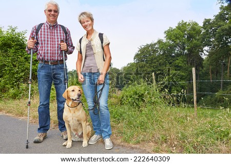 Two senior people walking with a labrador retriever dog in the summer - stock photo