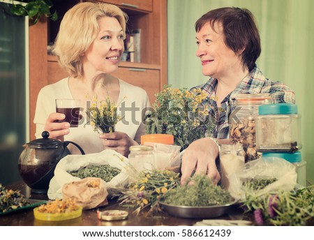 Two senior women sitting at the table and brewing herbal tea with medicinal herbs