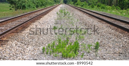 Two sets of railroad tracks with gravel ballast median containing growing weeds.
