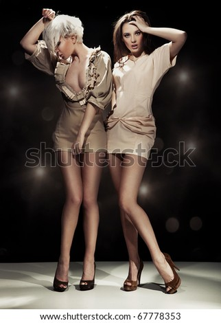 Two sexy woman - stock photo