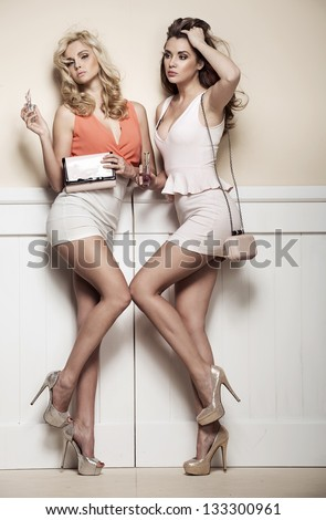 Two sexy women wearing mini skirts - stock photo