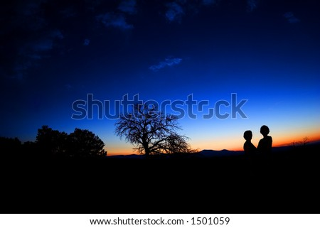 two shadows against the dusk glow - stock photo