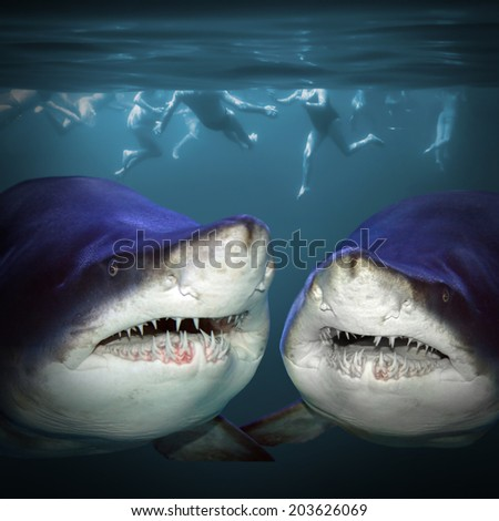 Two sharks have a fun.  - stock photo