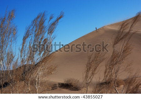 Two silhouette on dune in sand storm - stock photo