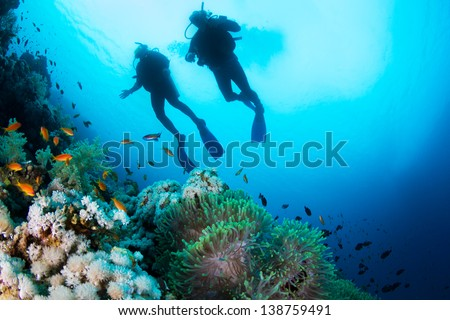 Two silhouettes of Scuba Divers swimming over the live coral reef full of fish and sea anemones. - stock photo