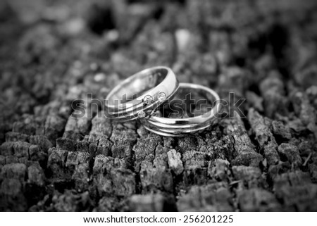 Two silver wedding rings on a tree stump - black and white - stock photo