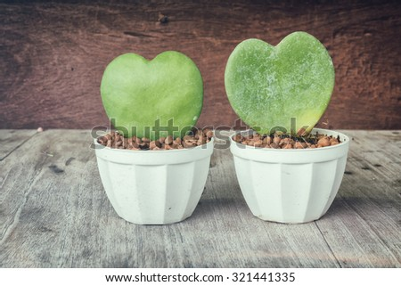 Two small Cactus In The Shape Of Heart On wood Background. concept vintage - stock photo