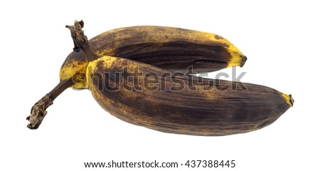Two small ripe bananas isolated on a white background. - stock photo