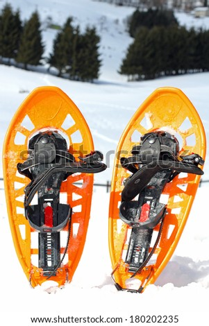 two snowshoes for walking on the soft snow on the high mountain in winter - stock photo
