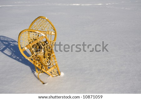 Two snowshoes standing in the snow - stock photo