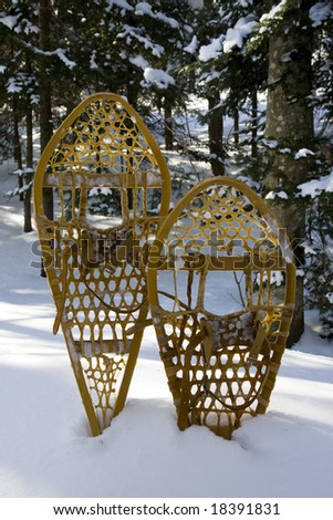 Two snowshoes standing in the snow in a bright forest - stock photo