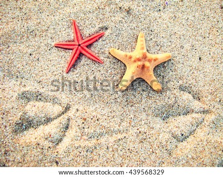 Two starfish and two bird traces of sand - stock photo