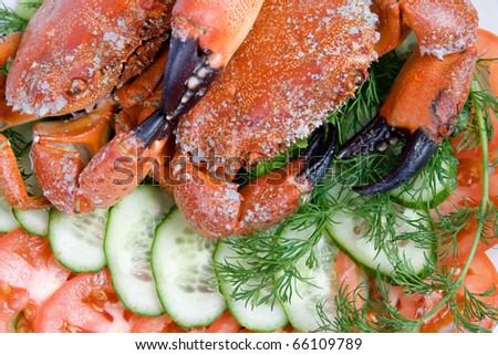 Two stone crabs on a plate decorated with vegetable slicing - stock photo