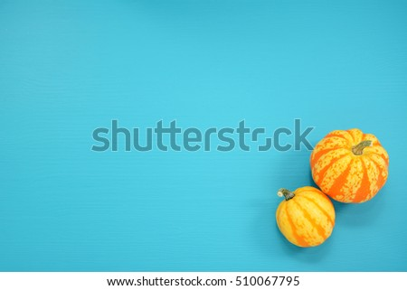 Two striped Festival squash on a teal painted wooden board background with copy space