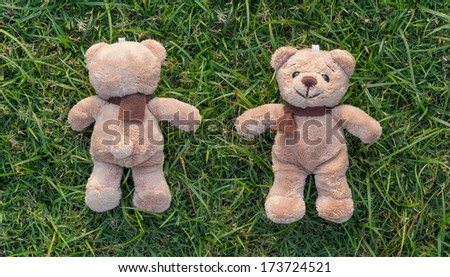 Two TEDDY BEAR brown color with scarf on the grass,front and back side - stock photo