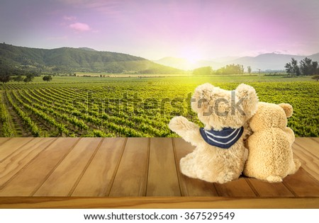 Two teddy bears looking at the sunset