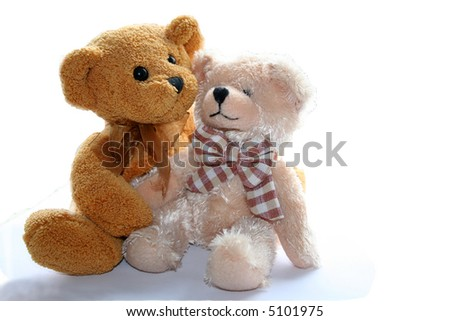 two teddy bears on white background - stock photo