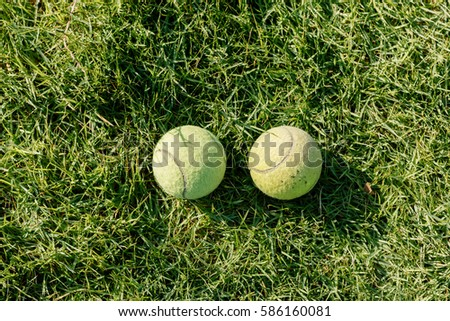 Two Tennis ball on the lawn