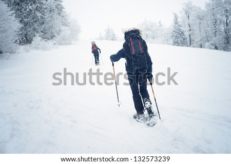 Two tourists are walking uphill in winter time on the snow with snowshoes - stock photo