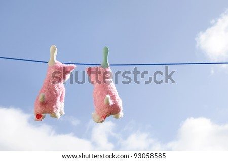 Two toy soft cats on a clothesline hanging out to dry.
