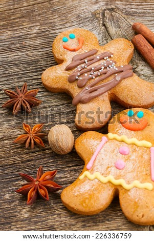 two traditional homemade gingerbread men with spices close up